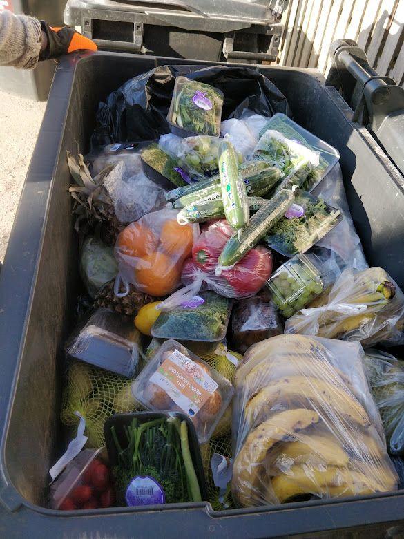 Toidukaupluse prügikastist päästetud toit. Foto: Mari-Liis Viirsalu