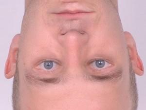 Objektipõhine nägemine: pööra pilt tagurpidi, et aru saada, mis fotol valesti on.