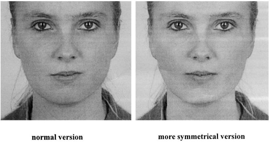 Pilt 3. Mida sümmeetrilisem on nägu, seda ilusamaks inimesed seda peavad.