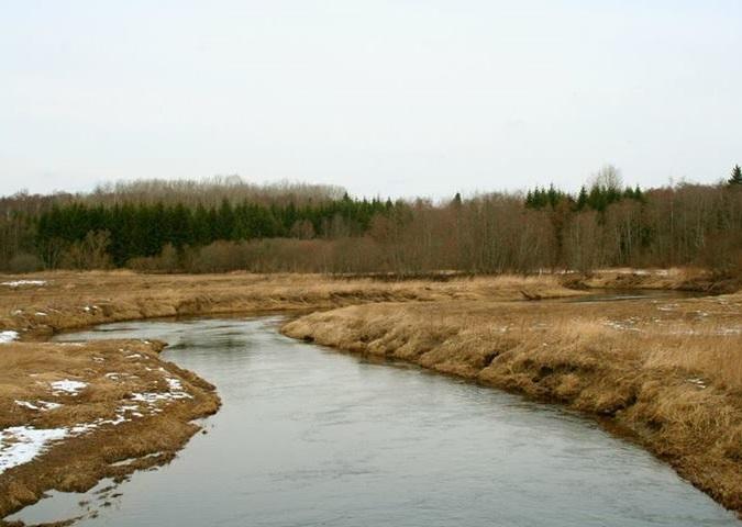 Alam-Pedja looduskaitseala. Foto: Annika Juhkanson