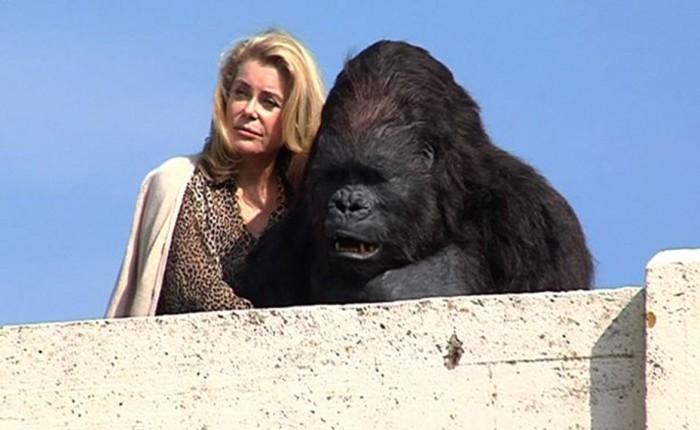 """Catherine Deneuve kehastab """"Uhiuues testamendis"""" gorillaga kokku elavat daami. Kaader filmist"""