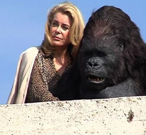 Catherine Deneuve kehastab filmis gorillaga kokku elavat daami. Kaader filmist