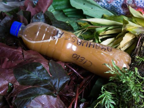Peruus võib ayahuasca't leida ka külaturult letialuse kaubana, aga see kraam näib kahtlane. Foto: Terje Toomistu