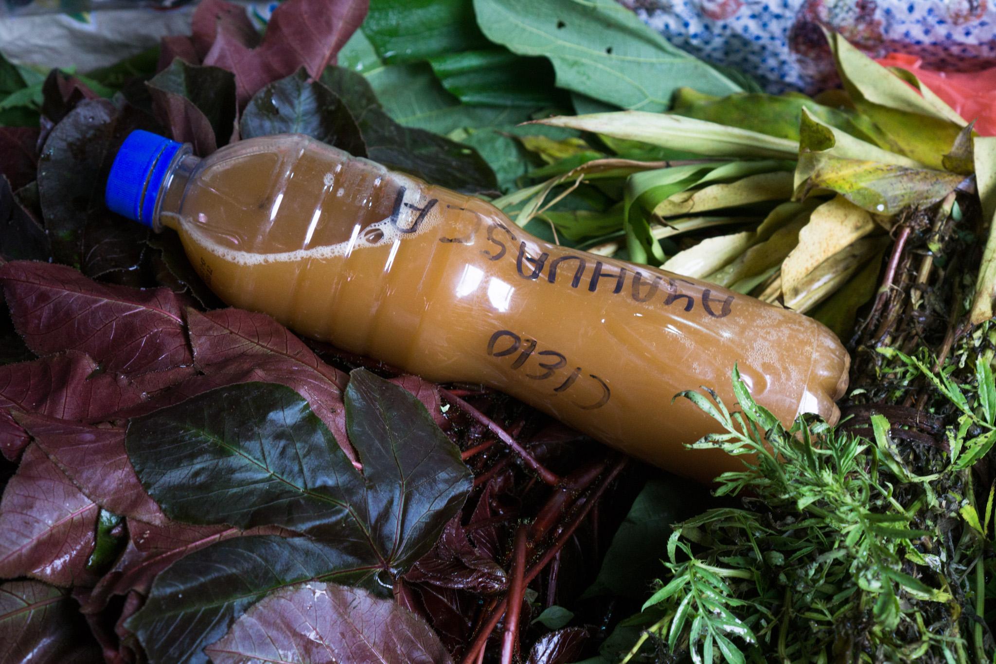 Peruus võib ayahuasca't leida ka Iquitose turult letialuse kaubana. Foto: Terje Toomistu