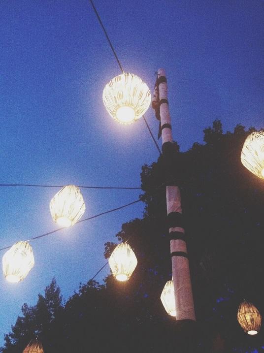 Festivaliala ilmestavad lambid. Foto: Triin Niinemets