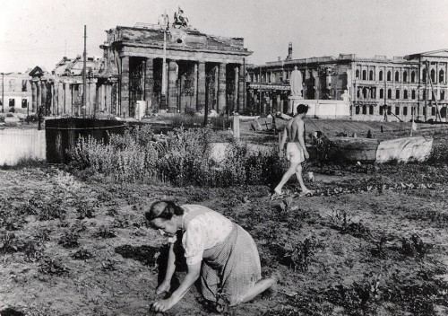 Vegetable garden near the Brandenburg Gate, 1947. Postcard