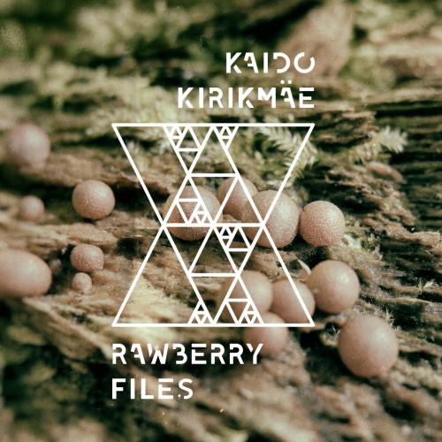 KaidoKirikmäe_RawberryFiles