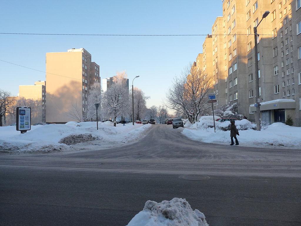 Keldrimäe. Foto: Dmitry G (Wikimedia Commons)