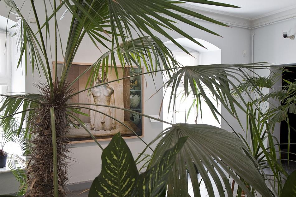 "M.A. ""Kogutud taimede salong"" (2014) ja Simon van Tili foto ""Object Study"" (2014), foto Anu Vahtra"