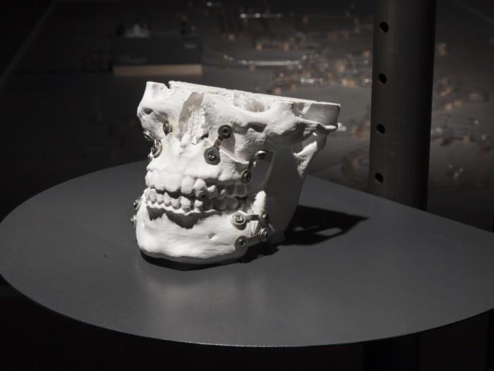 """Kuang-Yi Ku """"The Fellatio Modification Project"""" Transmediale näitusel """"alien matter"""". Foto: Luca Girardini (CC NC-SA 4.0)"""