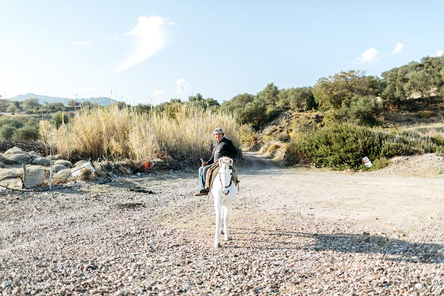 Populaarsesse maabumiskohta Lesbose rannal oleks vana valgel hobusel kreeklane justkui järgmistele saarele saabujatele vastu tulnud.