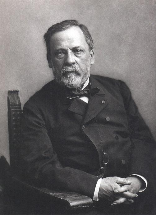 Louis Pasteur. Foto: Wikipedia