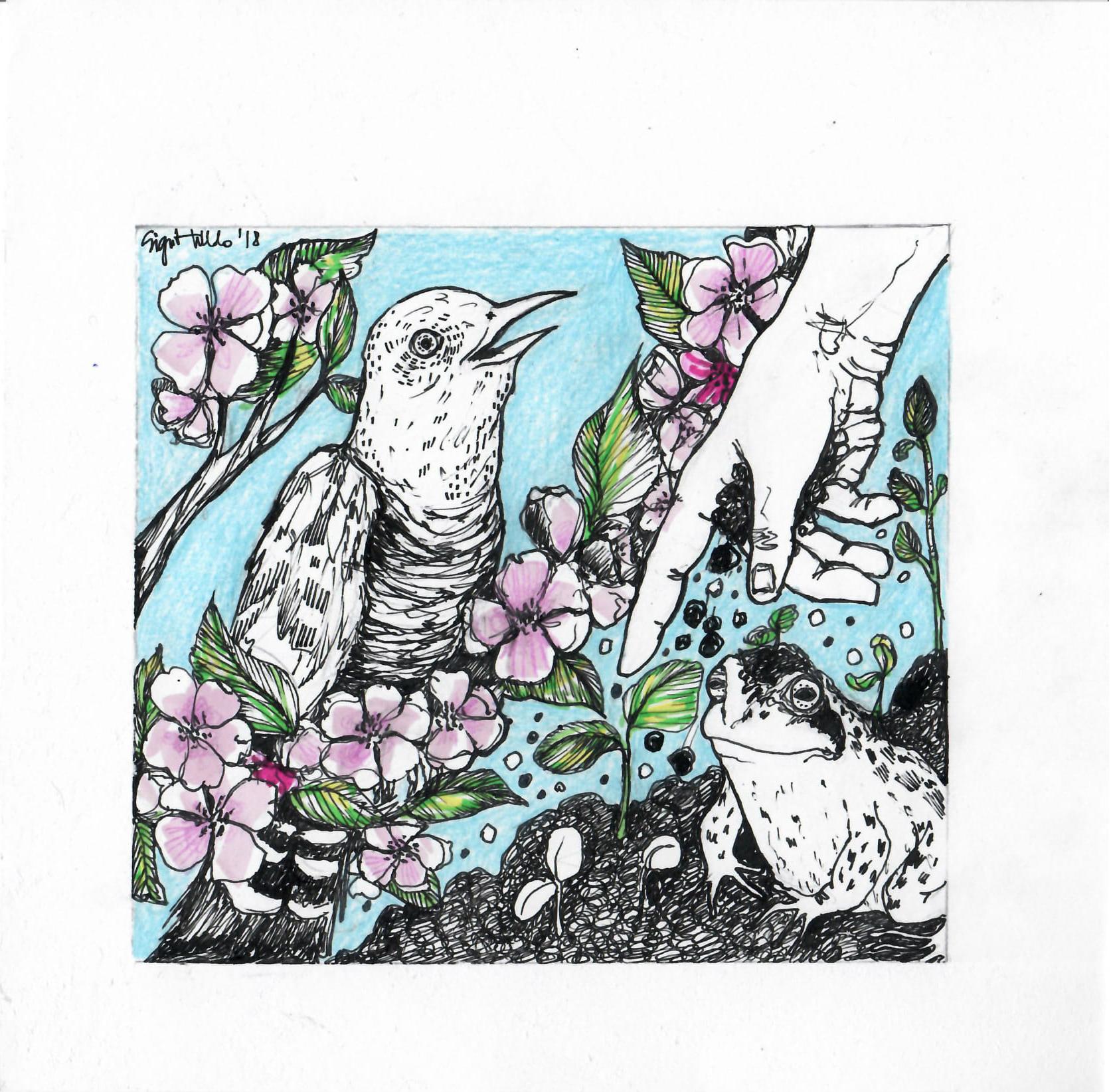Illustratsioon: Sigrit Villido