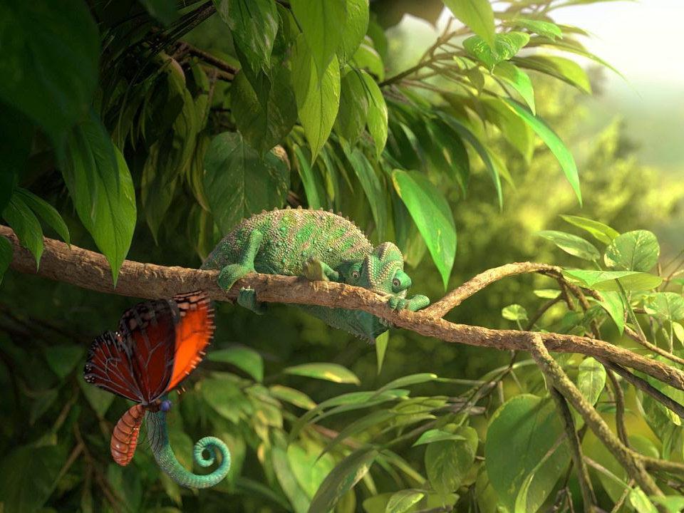 """Kaader 19. rahvusvahelise lühifilmifestivali Très Court publiku lemmikfilmist """"Meie imeline loodus (""""Our Wonderful Nature The Common Chameleon"""", rež. Tomer Eshed, Saksamaa)"""