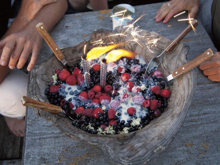 Hele-Mai Alamaa ning Merle Liivaku Metsaköögi algatus ja sellest sündinud kokaraamat ärgitab sööma ja kokkama metsas, puu otsas, rabarajal või kas või kanuus. Foto: Hele-Mai Alamaa