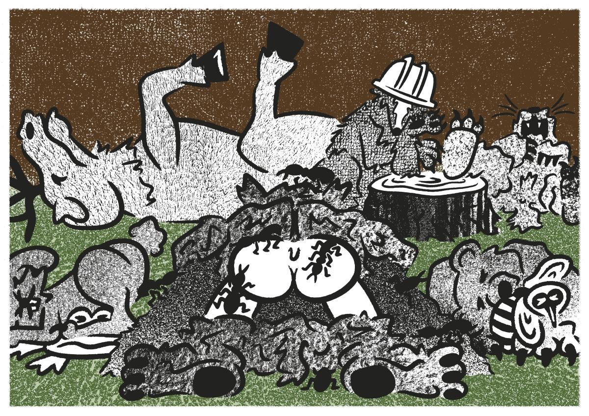 Illustratsioon: Fred Kotkas