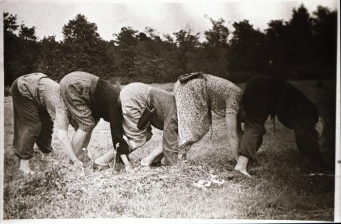 """Mis siin pildil toimub? Vastuse leiab Andreas Kalkuni artiklist """"Talurahva seksuaalelu mõistatusi"""". Foto: Kihelkonna, 1959. Eesti Rahvaluule Arhiiv, foto 16551"""