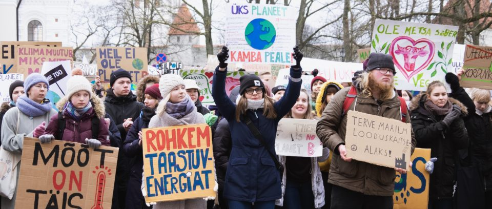 Kliimastreik Toompeal 15.03.2019. Foto: Janis Kokk
