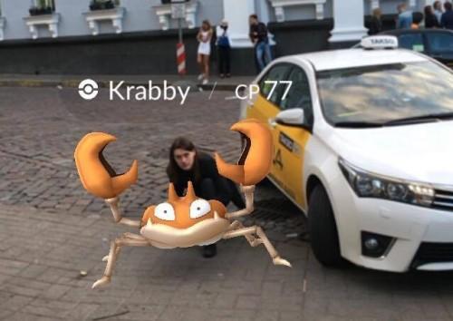Krabby ilmumine tuntud Tallinna peokoha läheduses. Foto: erakogu