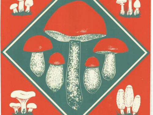 Peale seenenäituse on Loodusmuuseumis väljas postrinäitus, millega heidetakse pilk kümnele kelmikamale seenenäituse reklaamplakatile. Pildil Hendrik Tusti kujundatud plakat aastast 1974.