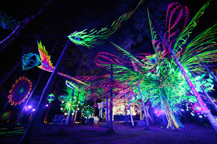 Metsäfestival 2014. The largest alternative music and arts festival in Finland that represents Suomisaundi and psytrance.