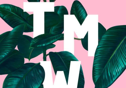 TMW 2014. aasta üldvisuaal. Allikas: TMW