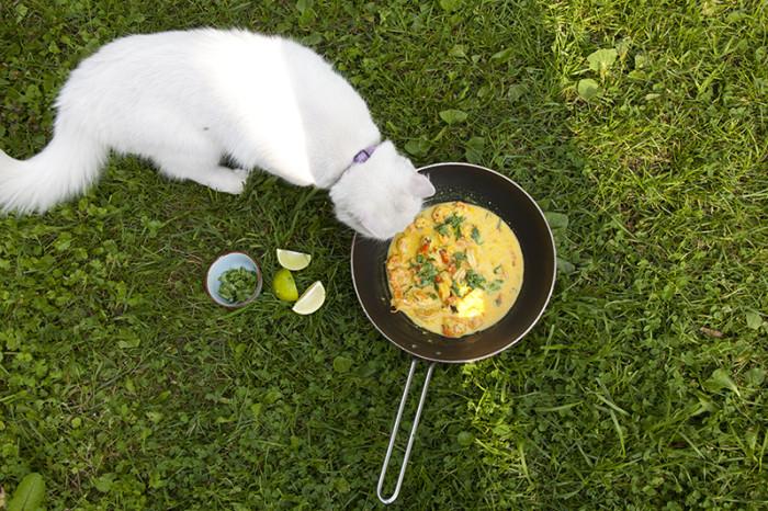 Kahvliahvi kokaraamatu piltide seast leiab viiteid kõigile asjaosalistele. Foto: Hele-Mai Alamaa