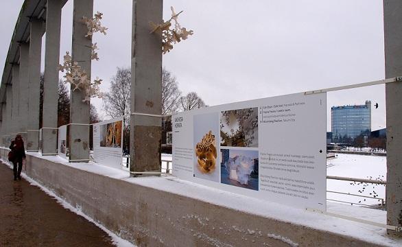 Uusnurga näitus ja seda artikuleerivad väikevormid Tartu Kaarsillal. Foto: Tõnis Arjus