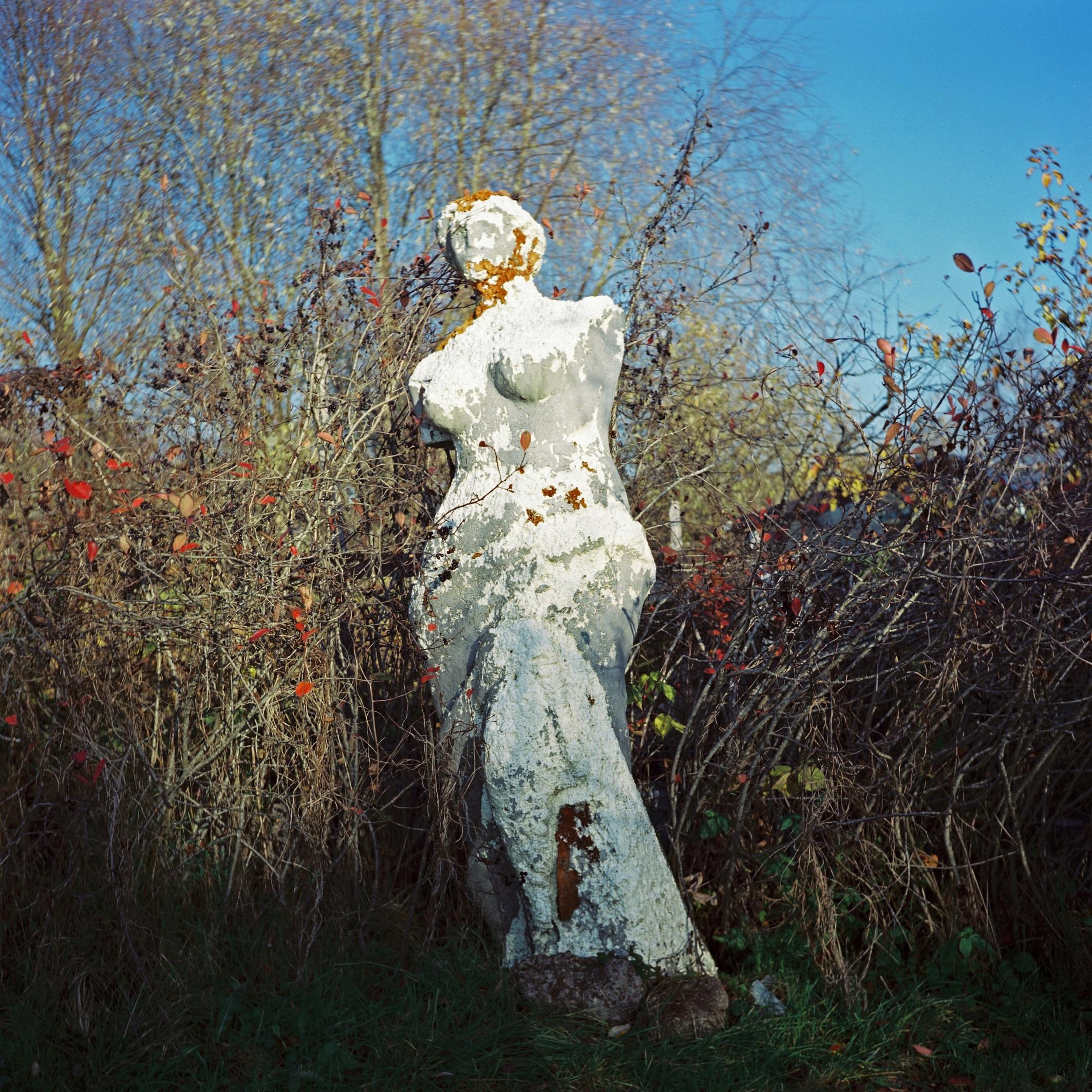 Venus de Milo, 26.10.2011
