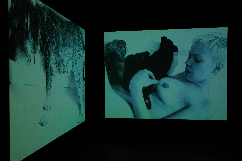 """Ene-Liis Semperi videoinstallatsioon """"Tugevama õigusega"""" (1998) """"Kumu hittide"""" näitusel. Foto: Hannes Aasamets"""