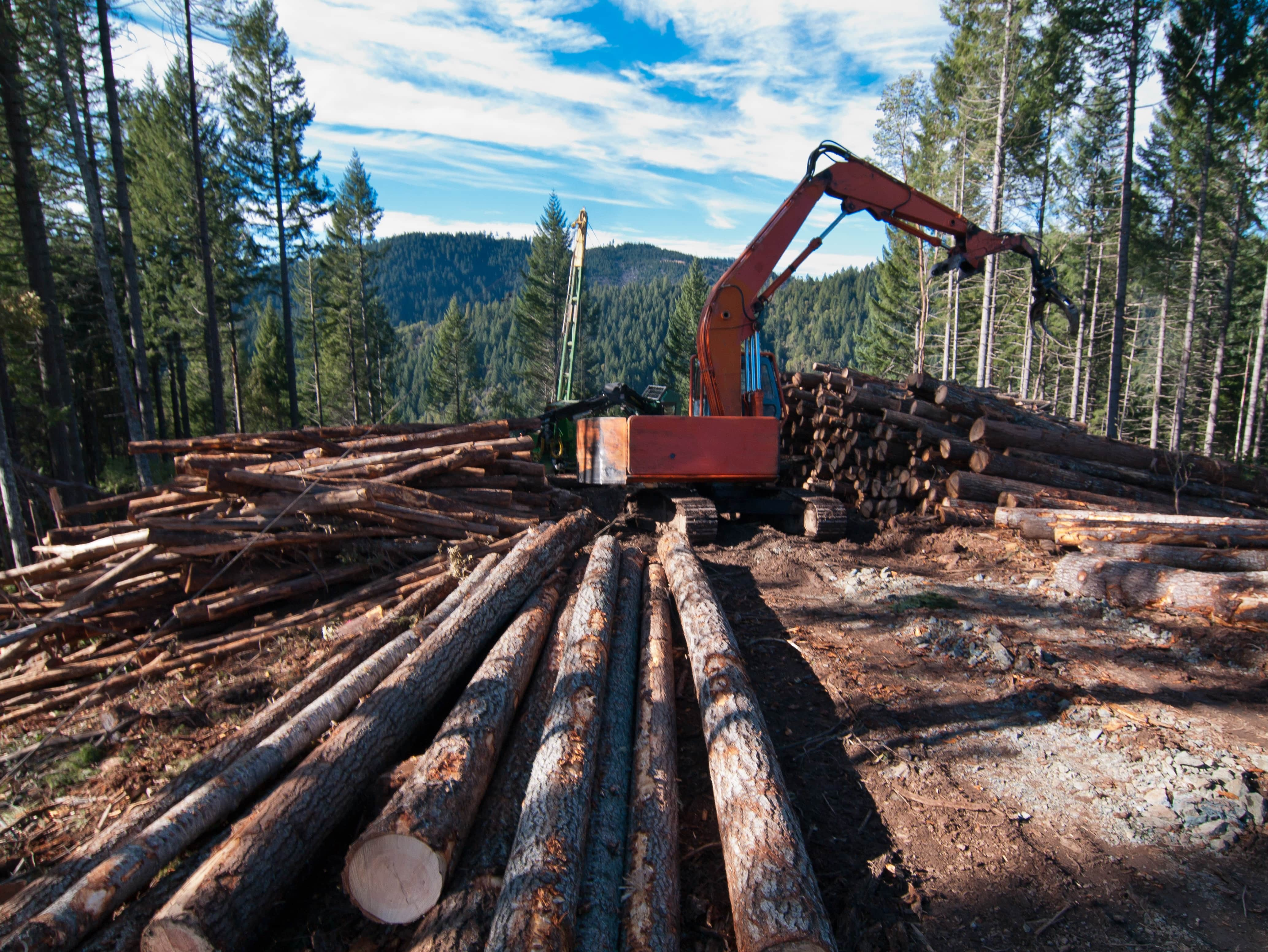 Foto: Oregon Department of Forestry (CC by 2.0)