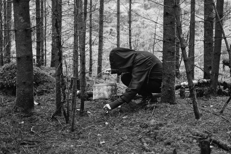Korilane Pähni metsas seenel. Fotod: Jaak Kaevats