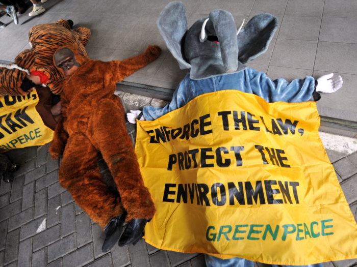 Palmiõli tootmise pärast murelikud Greenpeace'i aktivistid avaldamas meelt Indoneesia keskkonnaministeeriumi ees. Foto: Bay Ismoyo / AFP