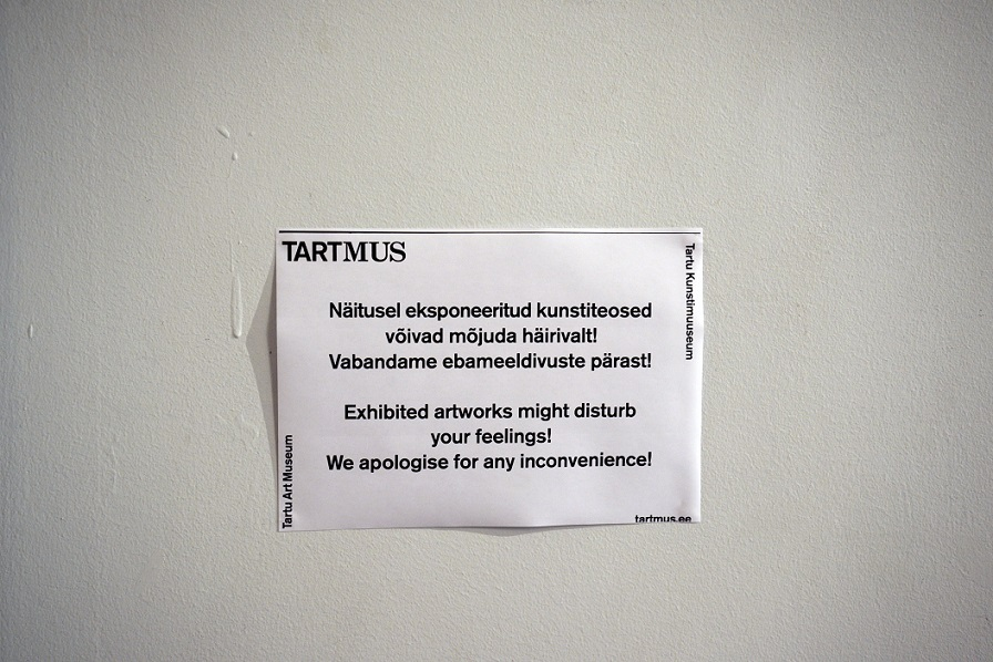 Tekst arutelu tekitanud teoseid eksponeerinud ruumi sissepääsul. Foto: Madis Katz
